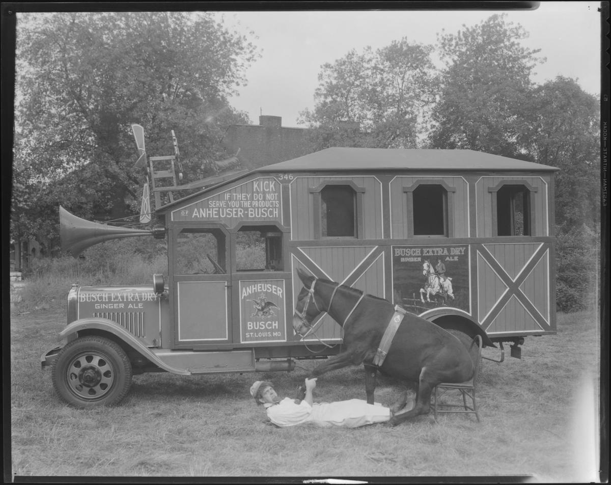 Donkey and Anheuser-Busch truck