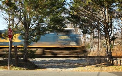 Pedestrian train fatalities