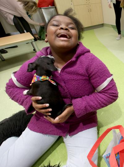 Puppies visit Children's Hospital on National Puppy Day