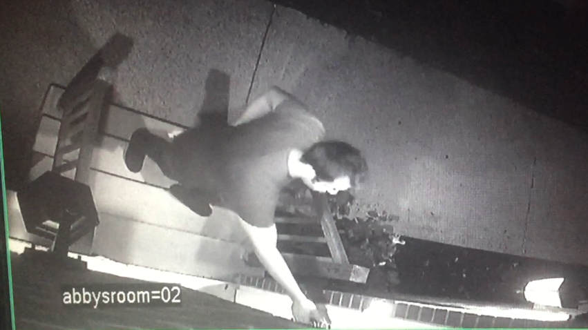 Soulard prowler at side of house