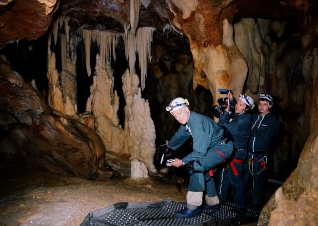 Film Review Cave of Forgotten Dreams