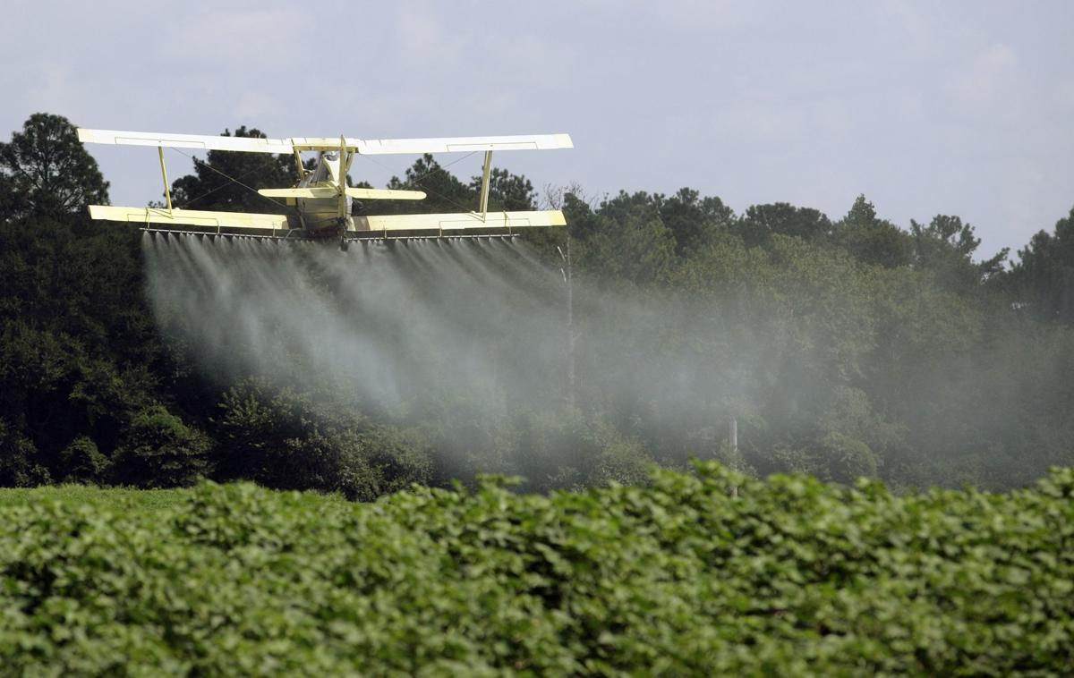 Neman: Is organic food healthier? New study shows organic diet reduces pesticides in body