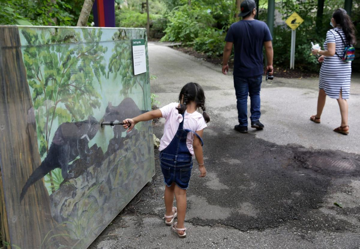 St. Louis Children's Zoo to close this fall