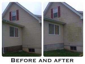 Before After #1.jpg