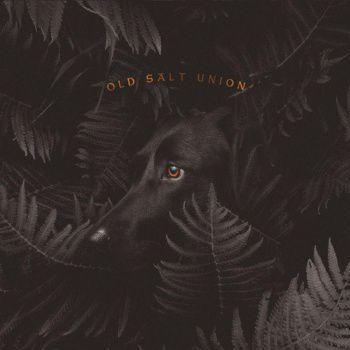 Old Salt Union album cover