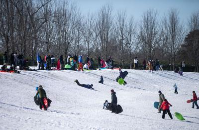 Sledding on Art Hill in Forest Park