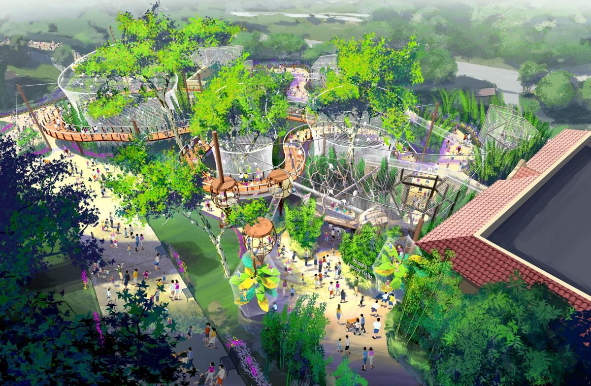 St. Louis Zoo announces new exhibit that will put primates — even humans —outside and into the trees