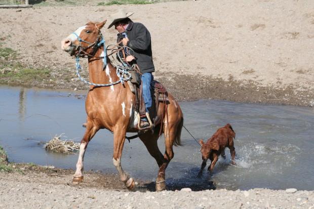 The Rockin' R Ranch in Utah