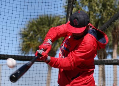 Cardinals spring training