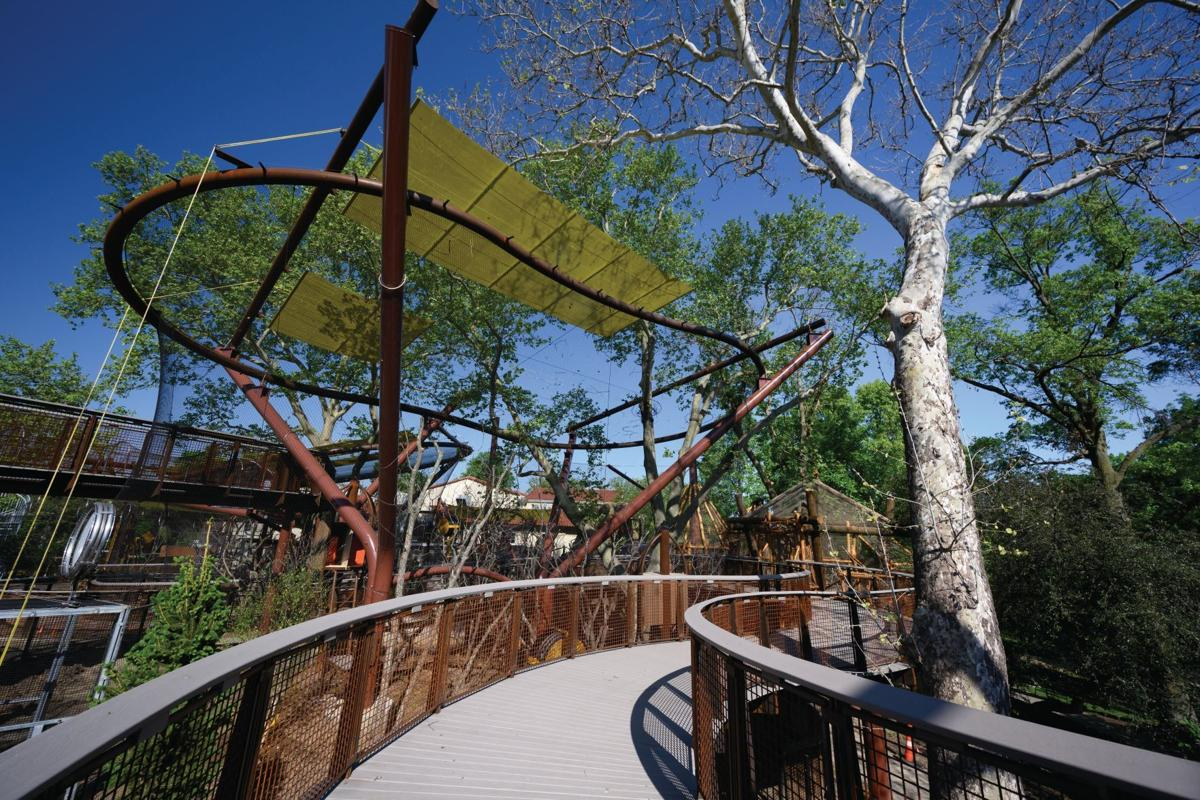 New outdoor primate exhibit to open at St. Louis Zoo July 12