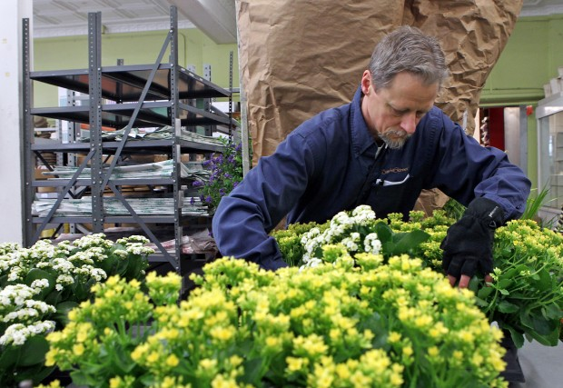 Baisch and Skinner Wholesale Floral Distributors
