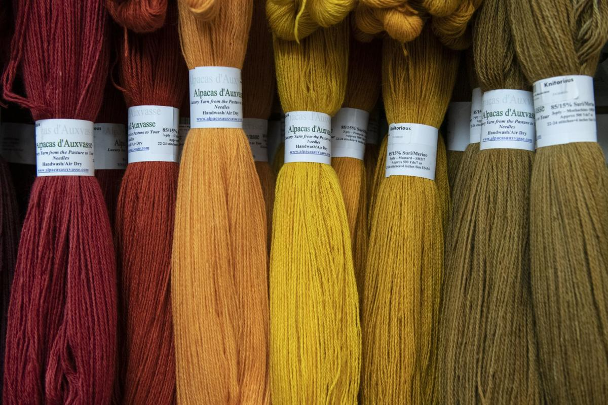 Survival of the knittest: Yarn stores in St. Louis rely on classes, competitors to stay in business