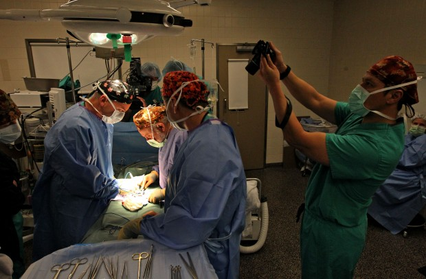 Doctor transplants ovary tissue
