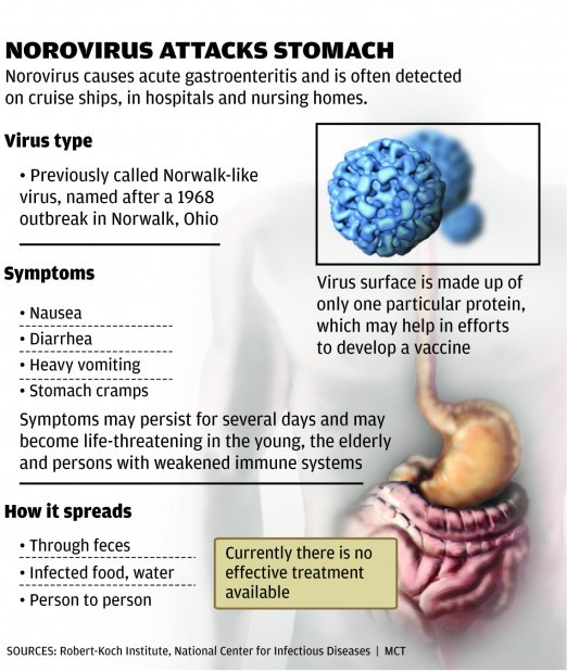 stomach virus spreads around st. louis | health | stltoday, Human body