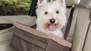 Best Dog Car Seats For 2021.