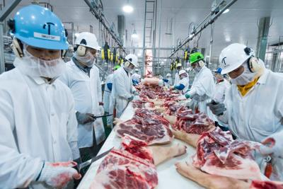 MEAT -- Triumph Foods