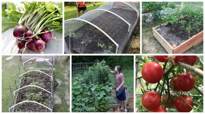 Now's a perfect time to grow a vegetable garden — and here's how to do it