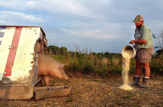 5th-generation hog farmer supplies