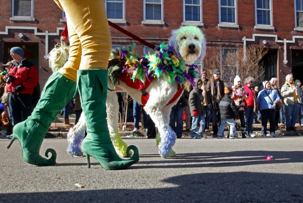 Beggin' Pet Parade kicks off Mardi Gras season