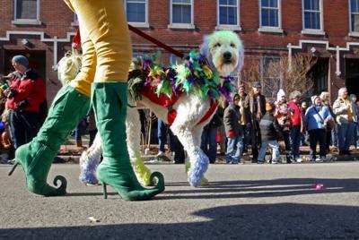 Beggin' Pet Parade kicks off Mardi Gras season
