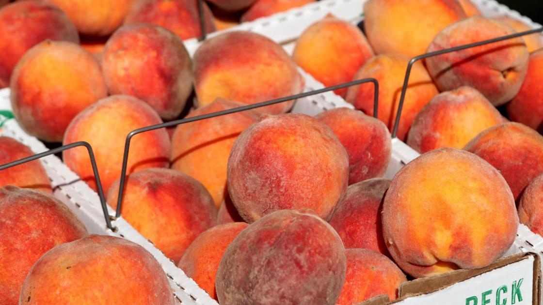 What's fresh at the farmers market this week