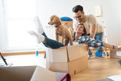 Young playful couple at their new apartment - Stock image