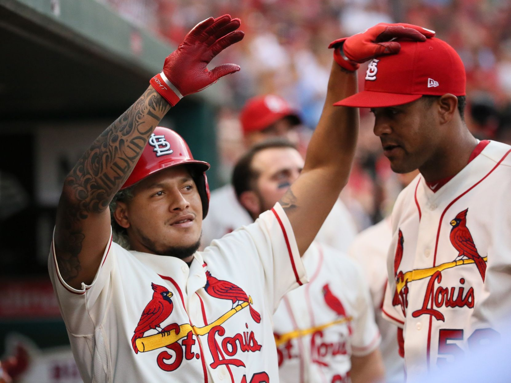 Cardinals stay hot, win seventh straight