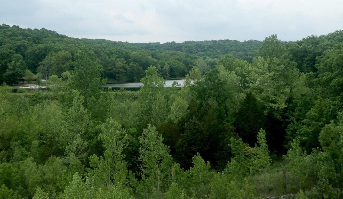 A small lake sits on forested land in Jefferson County