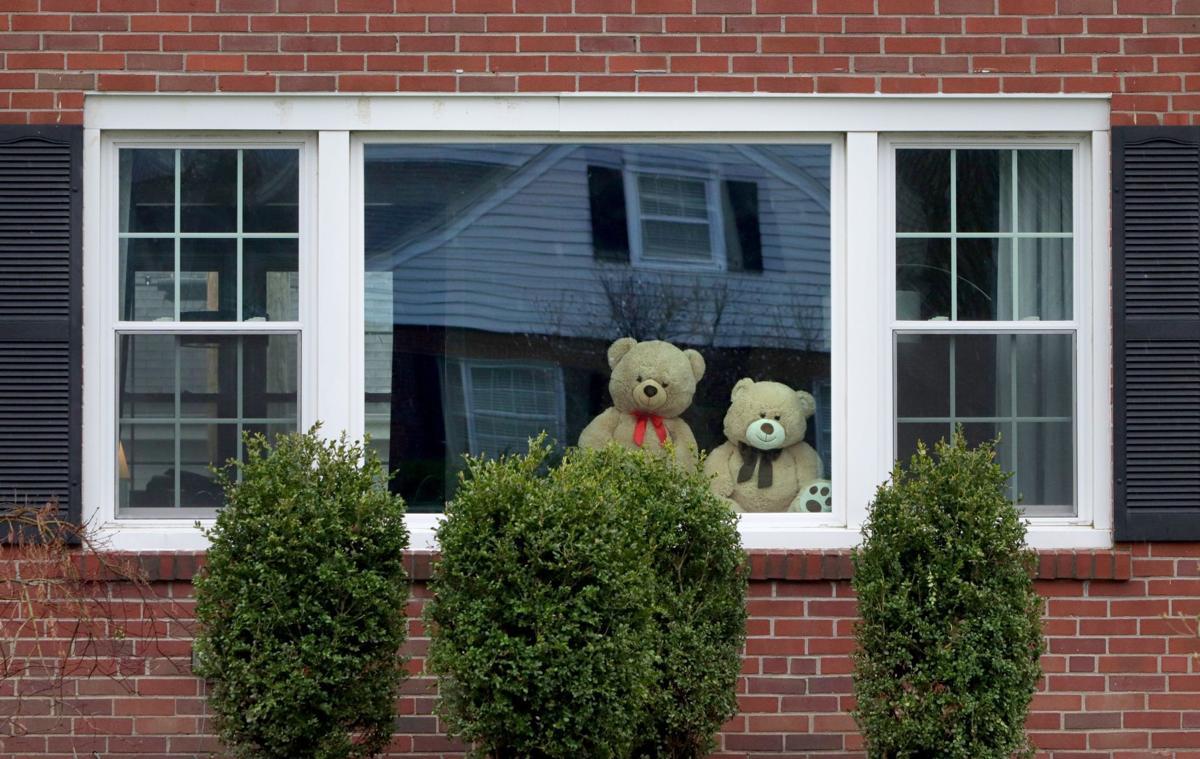 Bears in the window