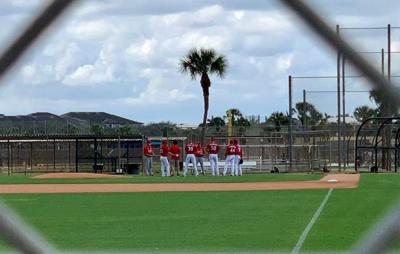 Cards 2021 spring training
