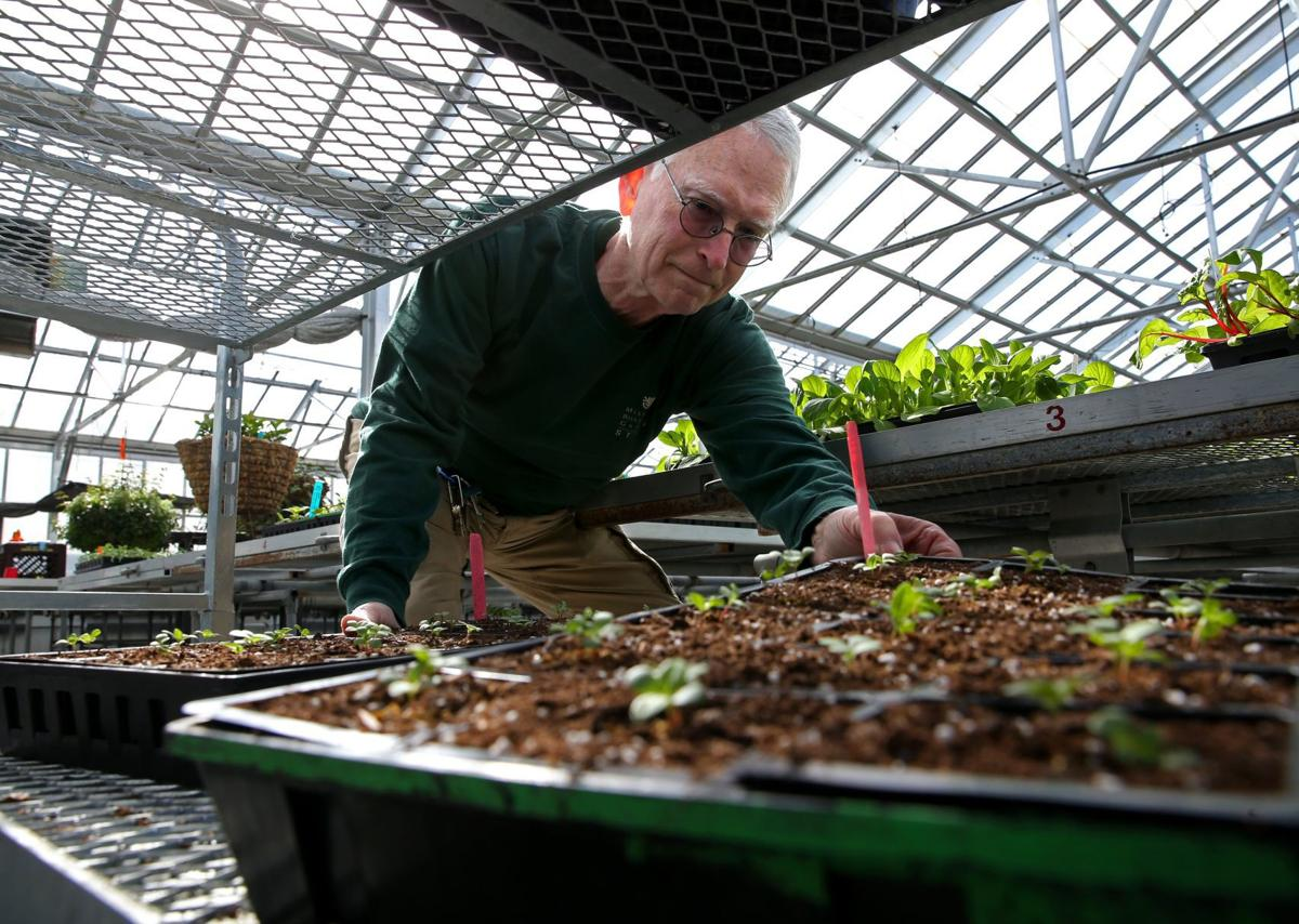 Longtime MoBot horticulturist retiring