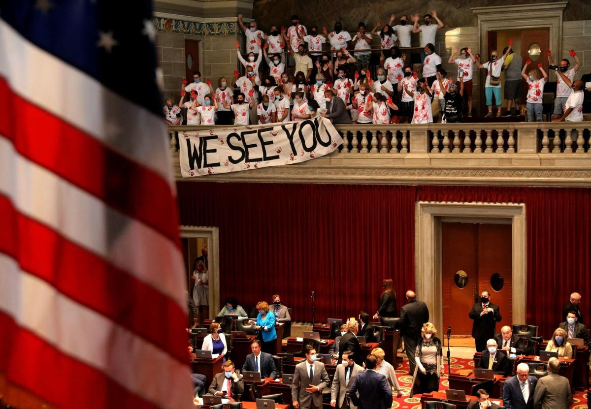 ExpectUsSTL protesters drop poster during House debate