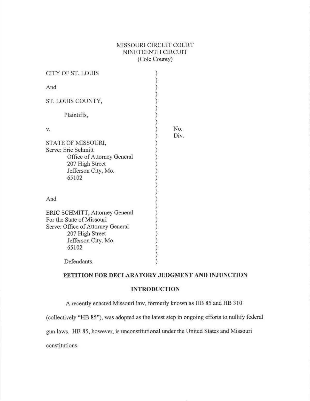 Gun nullification lawsuit