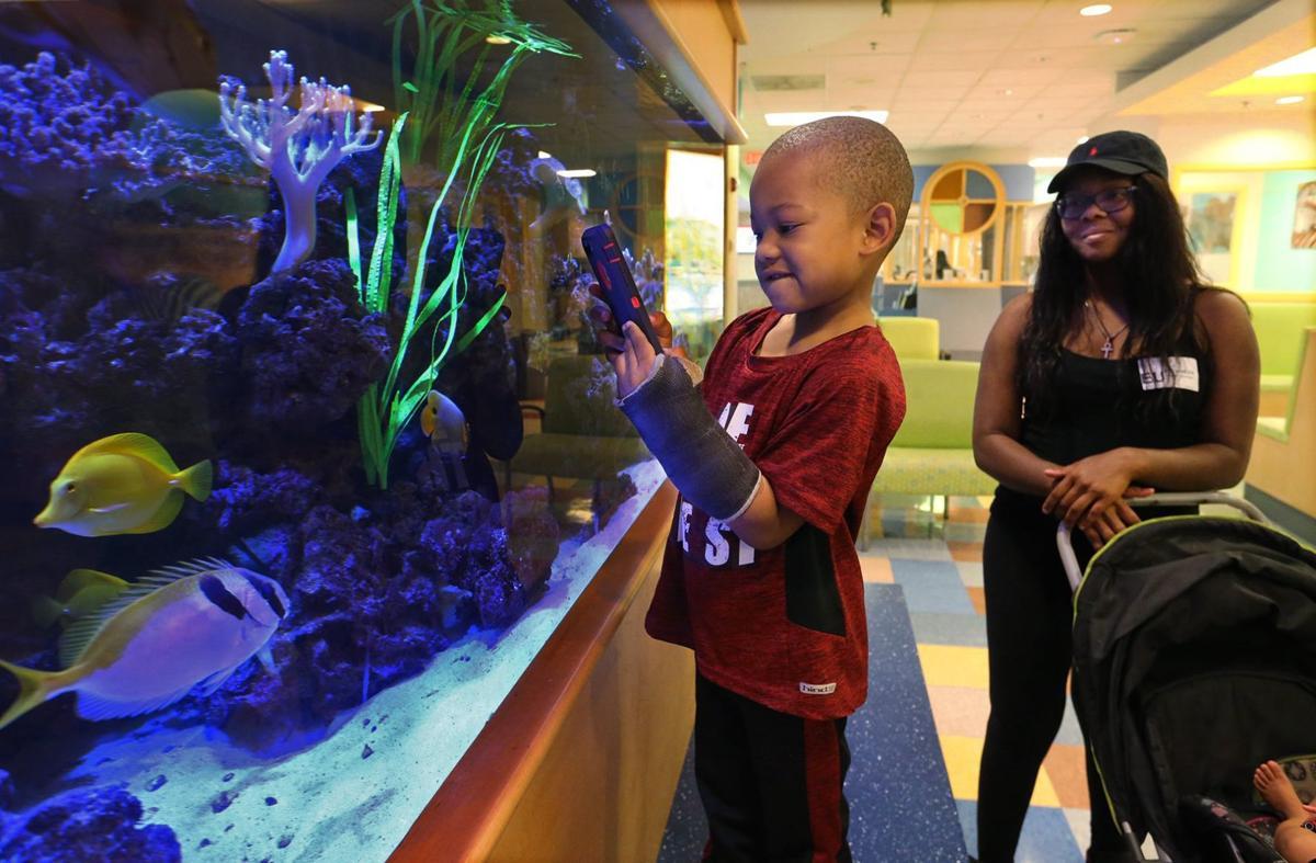 Image result for aquarium with kids