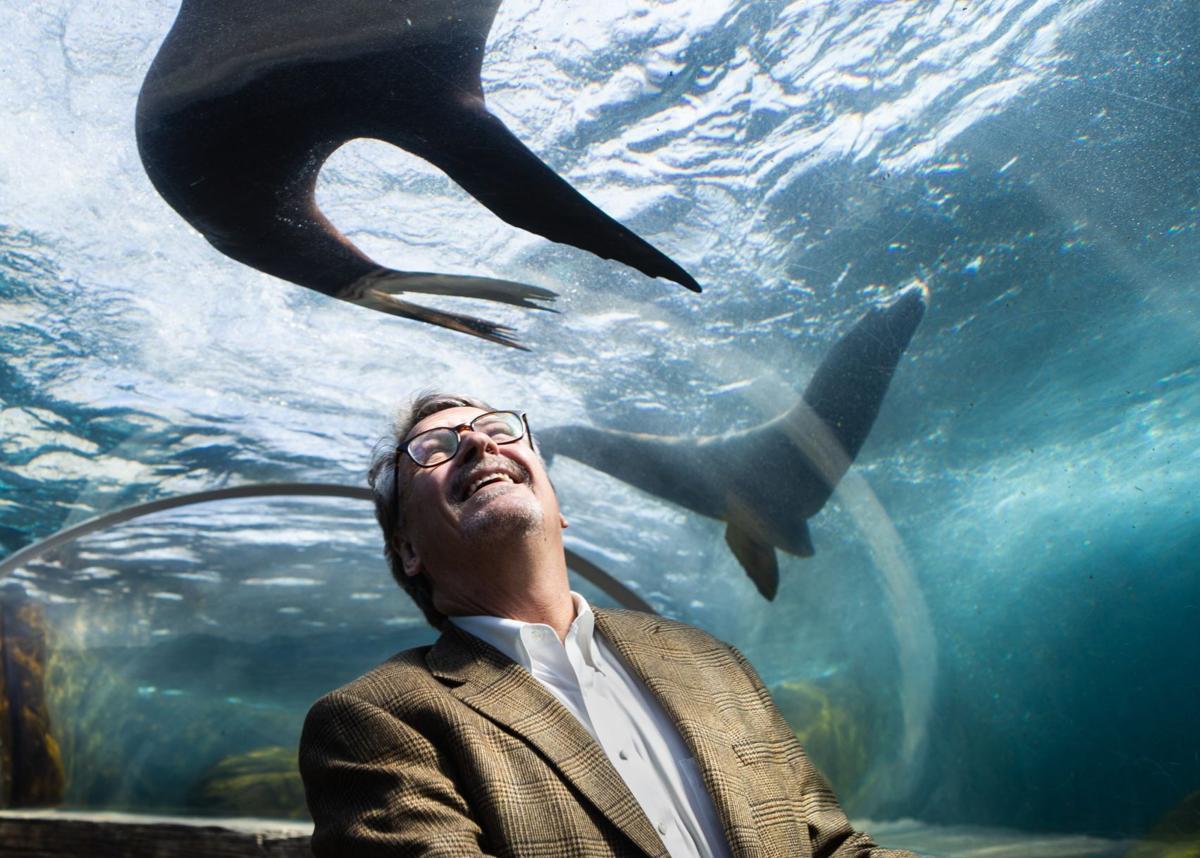 St. Louis Zoo President, Dr. Bonner, announces retirement
