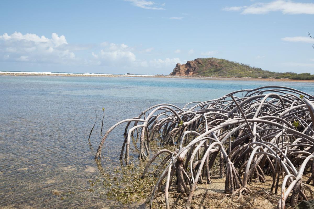 Caribbean cruise travel story