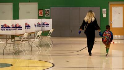 Voters speak in St. Louis' municipal primary