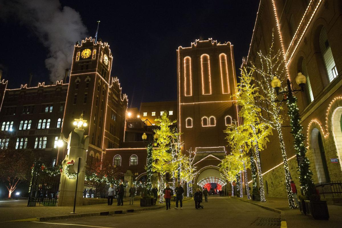 Best Bets: Brewery Lights, Magic of Lights, Way of Lights, Garden ...