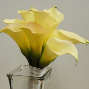 015_Walter Knoll Florist