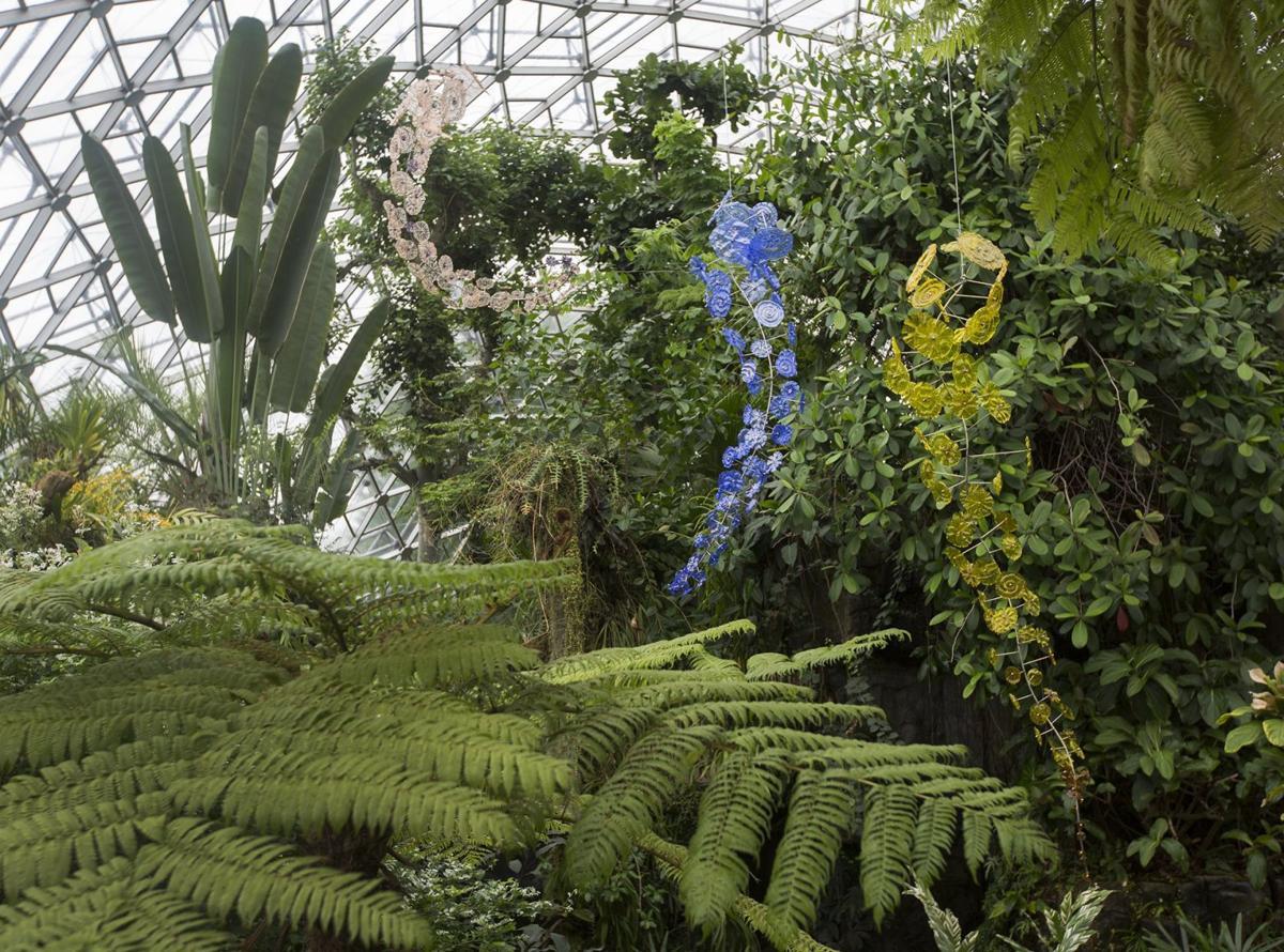 Glass exhibit opens at Missouri Botanical Garden