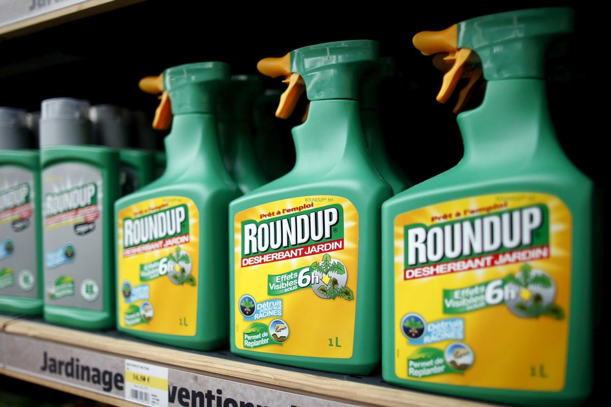 FILE PHOTO: Monsanto's Roundup weedkiller on display at a garden shop at Bonneuil-Sur-Marne
