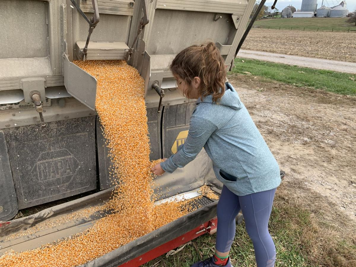 Ellie & Ollie Popcorn Harvest