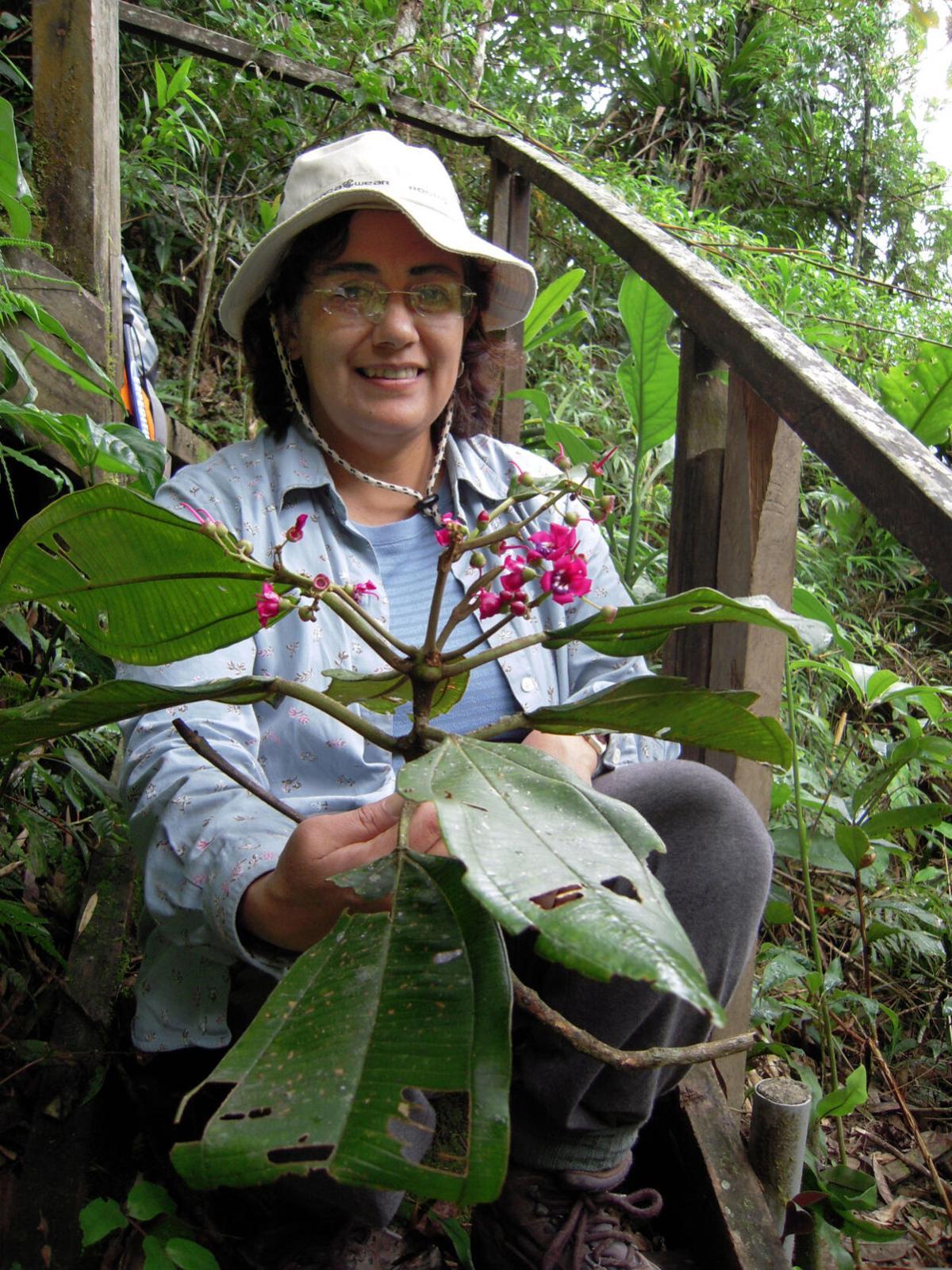 Missouri Botanical Garden researcher Carmen Ulloa