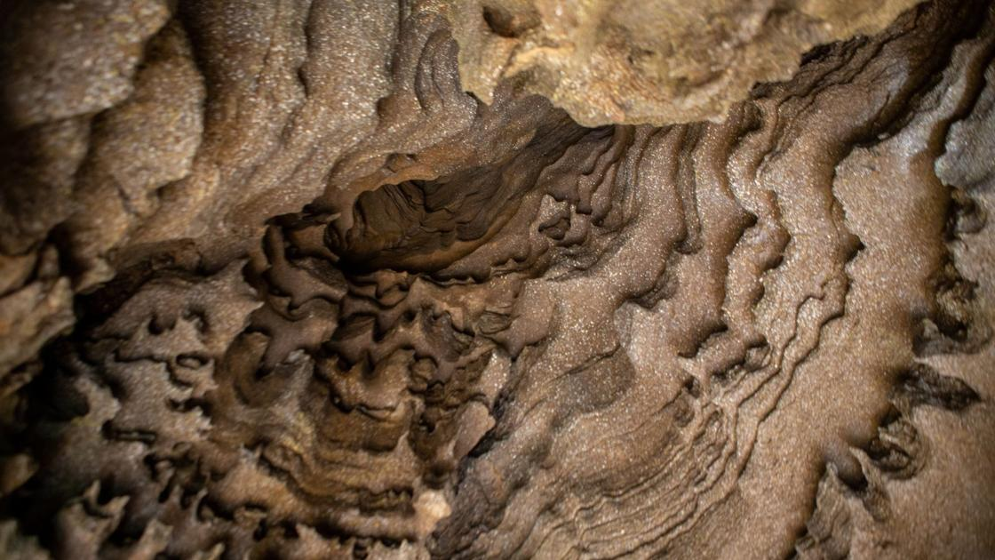 Illinois Caverns — a 'hidden gem' in Monroe County — reopens after being closed for more than a decade