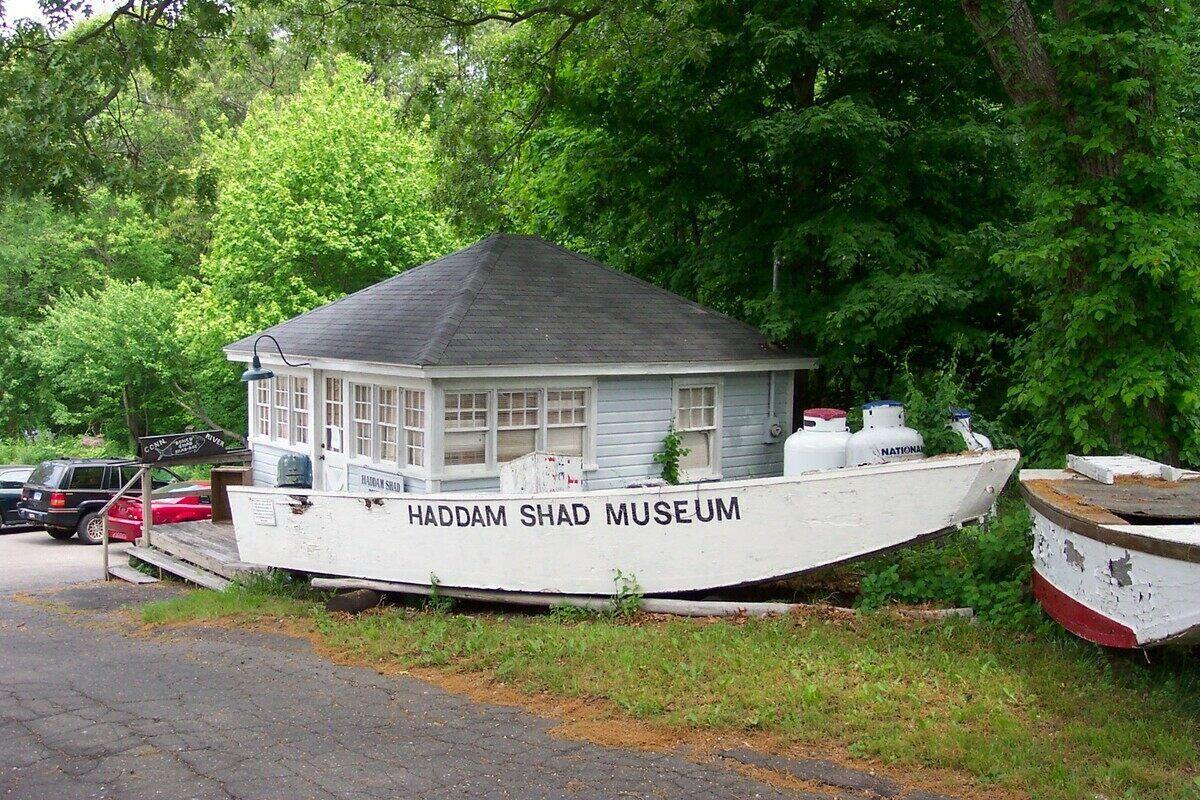 Haddam Shad Museum