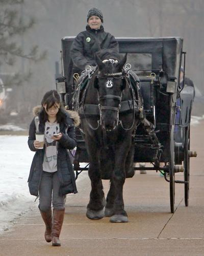 A tradition continues with carriage rides on the Wash U. campus