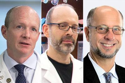 Washington University professors Bateman, Diamond, Hultgren