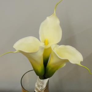 016_Walter Knoll Florist
