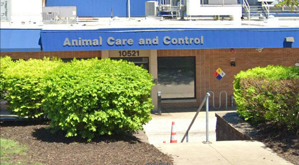 St. Louis County animal shelter building
