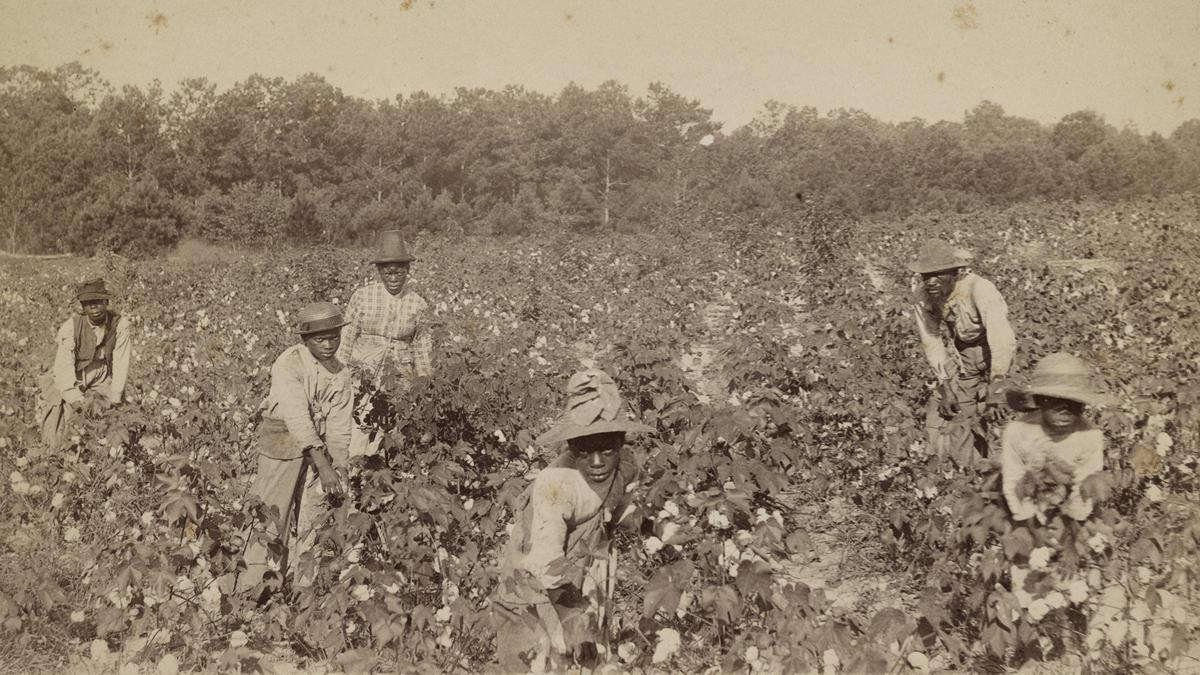"""""""Invisible History: Middle Florida's Hidden Roots"""""""